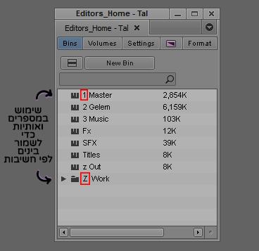 שימוש באותיות ומספרים כדי לשמור בינים לפי חשיבות